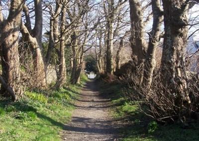 roundstone woods