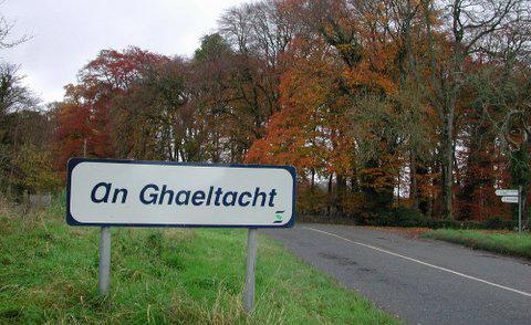 Údarás na Gaeltachta: Agencies & Support